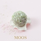 Mobile Preview: Moos