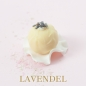 Preview: Lavendel